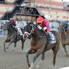 Royal Lahaina wins the 2013 Go for Wand Handicap.<br /> Coglianese Photos/Joe Labozzetta