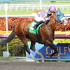Fort Loudon wins the 2013 Gulfstream Park Sprint Championship.<br /> Coglianese Photos/Courtney Heeney