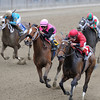 Glorious View wins the 2013 Vagrancy.<br /> Coglianese Photos/Chelsea Durand