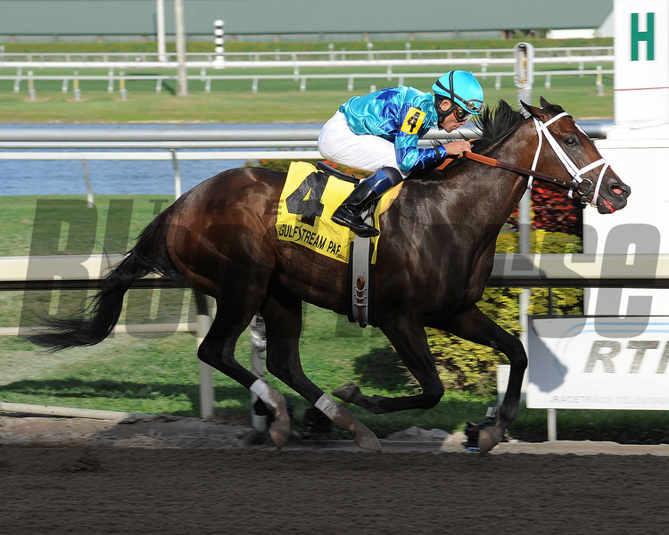 Live Lively wins the 2013 Davona Dale.<br /> Coglianese Photos/Leslie Martin