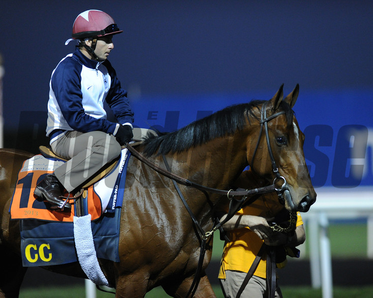 Varsity, Meydan, March 27th, 2013, photo by Mathea Kelley, Dubai World Cup 2013, Al Quoz Sprint;
