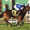 11/29/2013  -  Rosie Napravnik aboard Eden Prairie pulls away in the stretch and goes on to win the 29th running of the Pago Hop Stakes at Fair Grounds.  Hodges Photography  /  Lou Hodges, Jr.