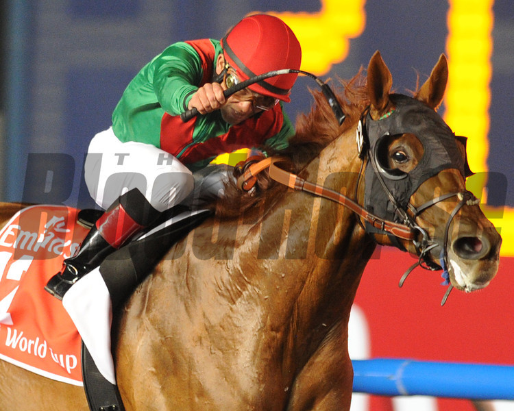 Animal Kingdom, Joel Rosario up wins the   Dubai World Cup   Meydan, March 30th, 2013, photo by Mathea Kelley<br /> Dubai World Cup Day