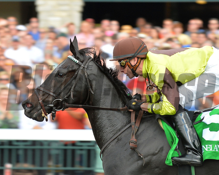 Prepared, Joseph Rocco Jr up, wins a Maiden Special Weight 2yr old, Keeneland Race Course; Lexington; photo by Mathea Kelley; 10/5/13;