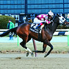 Freud's Notebook wins the Sonia's Scamp Stakes March 20, 2013.<br /> Coglianese Photos