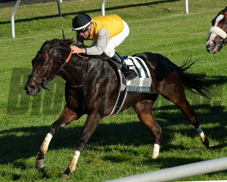 Queens Award, Kent Desormeaux up, wins the Buffalo Trace Franklin County Stakes, Keeneland Race Course; Lexington; photo by Mathea Kelley; 10/11/13;