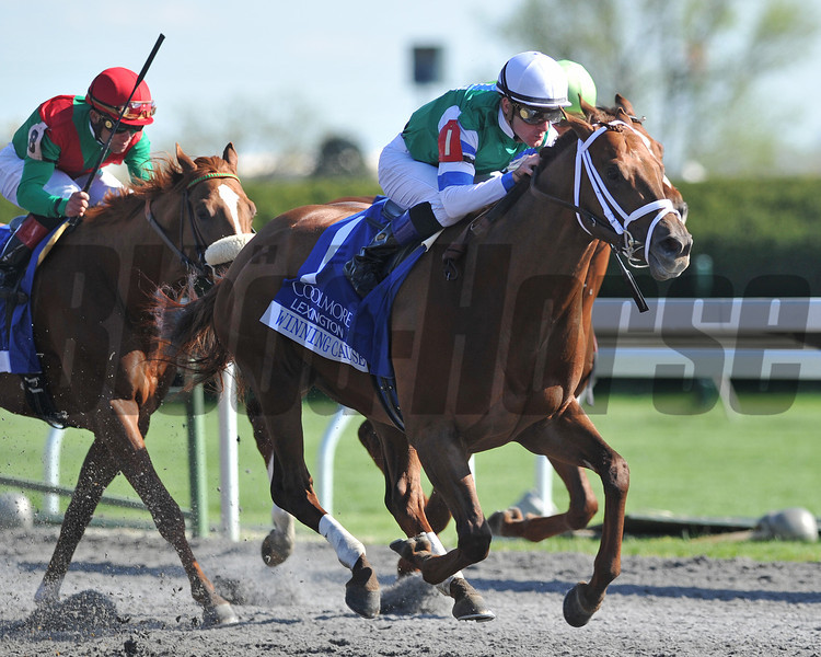 Winning Cause, Julien Leparoux up, wins the Coolmore Lexington, Keeneland Race Track, Lexington KY <br /> ©Photo by Mathea Kelley 4/20/13