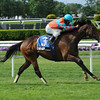 Tannery wins the 2013 Sheepshead Bay.<br /> Coglianese Photos