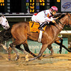 12/14/2013  -  Sunbean with Richard Eramia (pink cap) in the irons captures the 23rd running of the Louisiana Champions Day Classic by a nose in front of String King.  Hodges Photography / Lou Hodges, Jr.