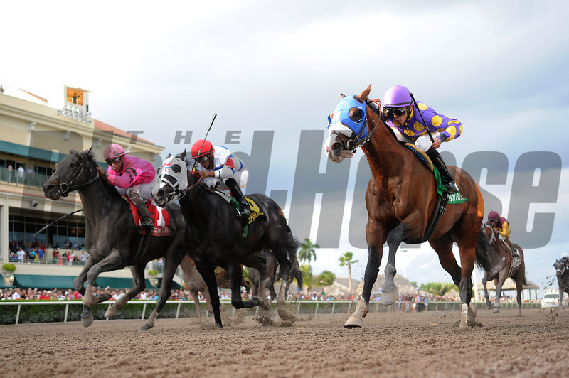 Fort Loudon wins the 2013 Gulfstream Park Sprint Championship.<br /> Coglianese Photos