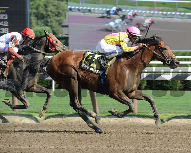 Sage Valley wins the 2013 James Marvin.<br /> Coglianese Photos