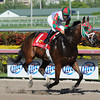 Ribo Bobo wins the 2013 Claiming Crown Express.<br /> Coglianese Photos