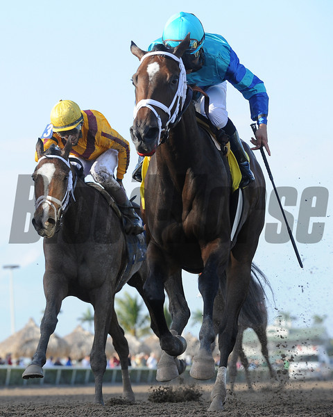 Live Lively wins the 2013 Davona Dale.<br /> Coglianese Photos