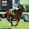 Dayatthespa wins the 2013 Yaddo Stakes<br /> Coglianese Photos
