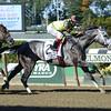 Graydar wins the 2013 Kelso.<br /> Coglianese Photos