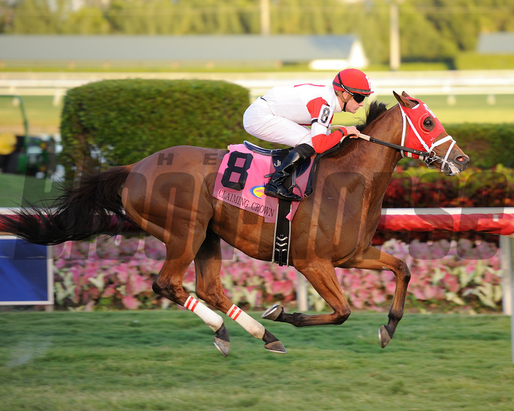 Major Marvel wins the 2013 Claiming Crown Emerald.<br /> Coglianese Photos