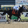 Revolutionary winning race 2 at Aqueduct on December 28, 2012.<br /> Photo by Coglianese Photos