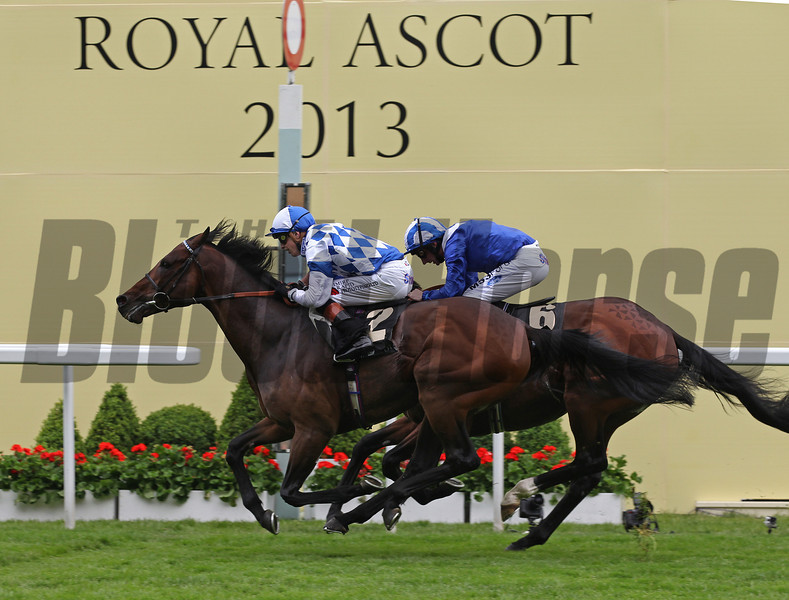 Racing from Ascot 19/6/13. The Prince of Wales's Stks.<br /> Al Kazeem (2) wins from Mukhadram (obscured)<br /> Trevor Jones Photo