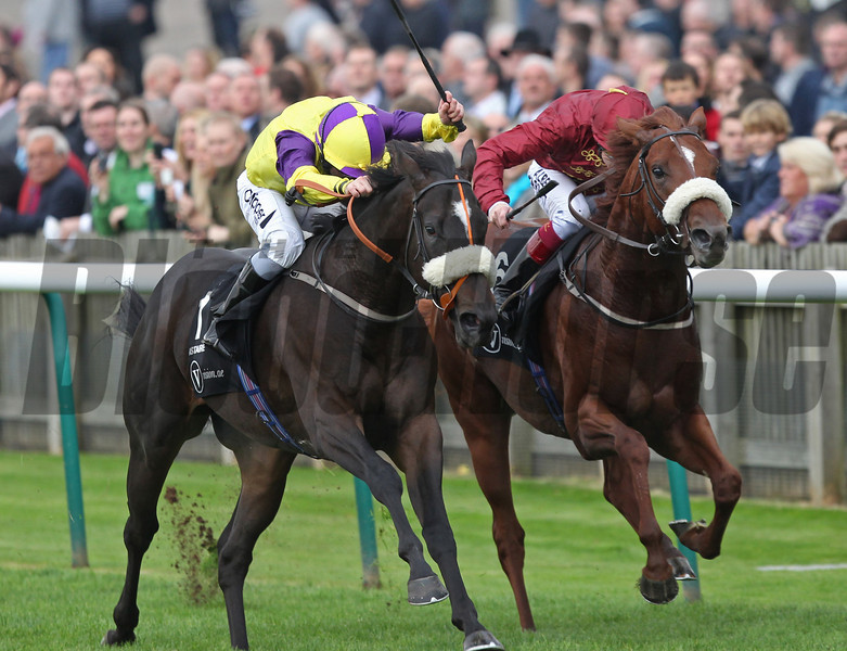 Newmarket 12/10/13  Middle Park Stakes.<br /> Astaire ridden by Neil Callen wins from Hot Steak (right)<br /> Trevor Jones Photo