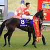 Red Reveur wins the Hanshin Juvenile Fillies.<br /> Naoji Inada Photo