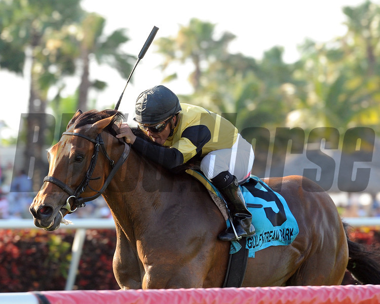 Twilight Eclipse wins the 2013 Pan American.<br /> Coglianese Photos/Kenny Martin