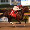 Nevada Kid wins the 2013 Claiming Crown Jewel.<br /> Coglianese Photos/Lauren King