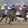 Comma To The Top (#2), Joel Rosario up, holds off Saturday's Charm, to win the Gr3 Tom Fool at Aqueduct<br /> © 2013 Rick Samuels/The Blood-Horse