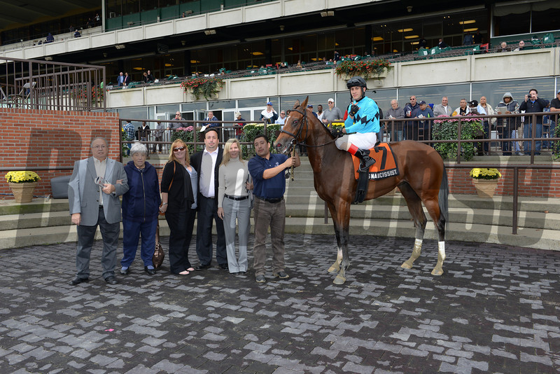 Miss Narcissist wins the 2013 Joseph A. Gimma Stakes.<br /> Coglianese Photos/Joe Labozzetta