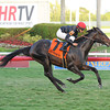 Mr Speaker wins the 2013 Dania Beach Stakes.<br /> Coglianese Photos/Leslie Martin