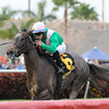 Tuttipaesi wins the 2012 Ginger Brew.<br /> Coglianese Photos/Kenny Martin