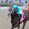 Comandante wins the 2013 NY Stallion Series - Thunder Rumble.<br /> Coglianese Photos