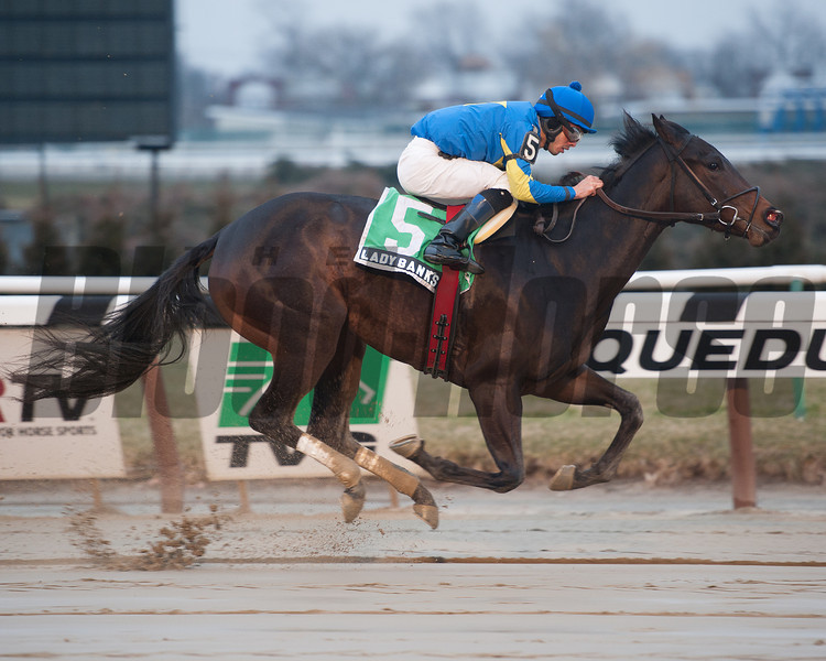 Lady Banks captures The Ruthless stakes at Aqueduct, New York, 1/11/13....Ridden by Eddie Castro....<br /> Coglianese Photos