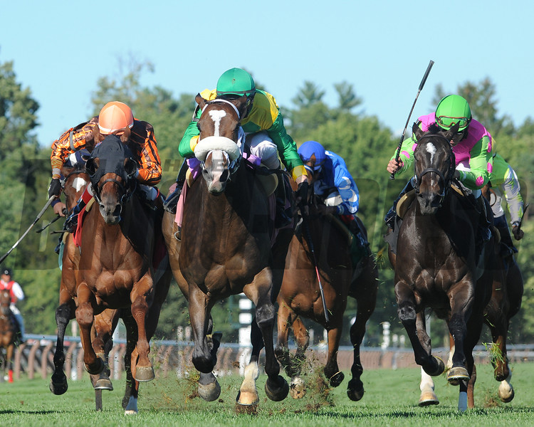 Summer of Fun wins the 2013 Auntie Mame Stakes.<br /> Coglianese Photos/Adam Mooshian