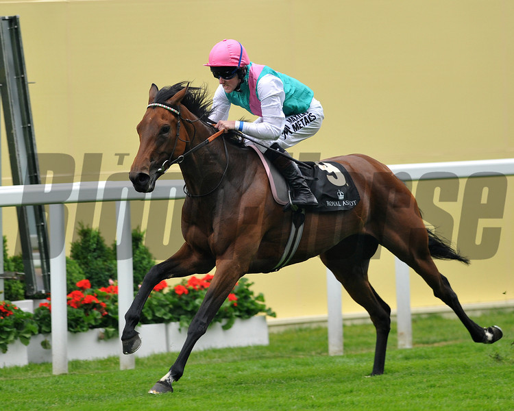 Riposte, Tom Queally up, wins the Ribblesdale  Stakes, Royal Ascot; UK, photo by Mathea Kelley; 6/20/13