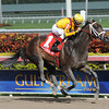 Kauai Katie wins the 2013 Old Hat Stakes.<br /> Coglianese Photos/Courtney Heeney