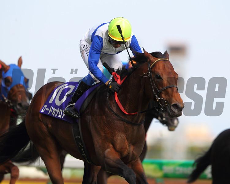 Lord Kanaloa wins the Yasuda Kinen in Japan.<br /> Photo by Masakazu Takahashi