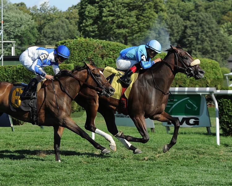 Assateague wins the 2013 De La Rose Stakes.<br /> Coglianese Photos