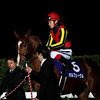 Orfevre wins the Arima Kinen in Japan.<br /> Masakazu Takahashi
