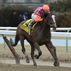 Summer Applause wins The Top Flight at Aqueduct Race Course 3/3/13.  Photo by Skip Dickstein