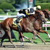 Dance to Bristol won the Honorable Miss.<br /> Coglianese Photos