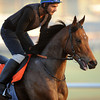 Spirit Quartz, Meydan, March 28th, 2013, photo by Mathea Kelley, Dubai World Cup 2013, Al Quoz Sprint;