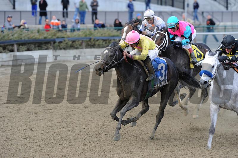 Vicki's Dancer wins the 2013 New York Stallion Series.<br /> Coglianese Photos