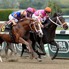 Vegas No Show wins the 2013 Coastal Stakes.<br /> Coglianese Photos