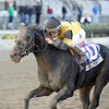 Awesome Vision wins the 2013 Move It Now Stakes.<br /> Coglianese Photos