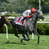 Silverette wins the 2013 Sportech Caress Stakes.<br /> Coglianese Photos