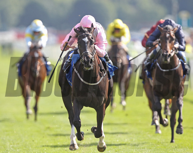 Racing from York 22/8/13. The Darley Yorkshire Oaks.<br /> The Fugue (left) ridden by William Buick wins from  Venus De Milo and Ryan Moore (right)<br /> Trevor Jones Photo