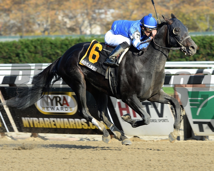 Romansh wins the Discovery Handicap (gr. 3)<br /> Jockey: Jose Ortiz<br /> AQUEDUCT, Ozone Park, NY<br /> Purse: $200,000<br /> Date: November 2, 2013<br /> Class: Grade 3<br /> TV: HRTV/TVG<br /> Age: 3 yo<br /> Race: 6<br /> Distance: One And One Eighth Miles<br /> Post Time: 3:23 PM<br /> Photo by: Adam Coglianese/NYRA