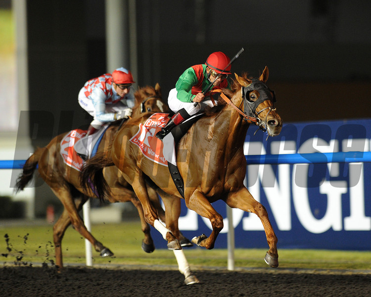 Animal Kingdom wins the 2013 Dubai World Cup. March 30, 2013. Ridden by Joel Rosario. Trained by Graham Motion. Owned by Arrowfield Stud and Team Valor International.<br /> Mathea Kelley Photo
