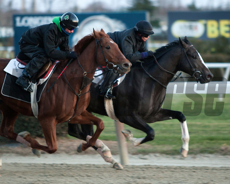 Honor Code works 11/24/2013<br /> Coglianese Photos/Susie Raisher