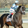 Verrazano wins the 2013 Wood Memorial (Normandy Invasion 2nd).<br /> Coglianese Photo
